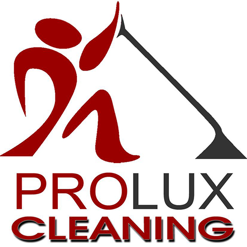 ProLux-Cleaning-500×500