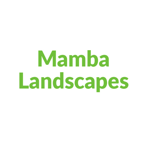 Mamba Landscapes
